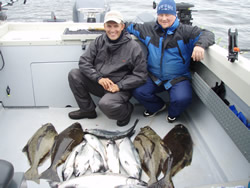 Fishing has continued to be very good offshore.   The days out on the Pacific offshore are spectacular.  In this picture Mardie of Ontario is happy as he and his three other Ontario friends had a great day landing limits of halibut, Chinook and Coho.  These fisherman fished the Big Bank and the guide was Al
