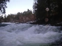 The days are clear and crisp in Port Alberni.   The November rains have had the Stamp river rise dramatically and in many spots it is moving very quickly as displayed in this picture  When fishing the Stamp by foot or jet boat make sure you know where you are going.